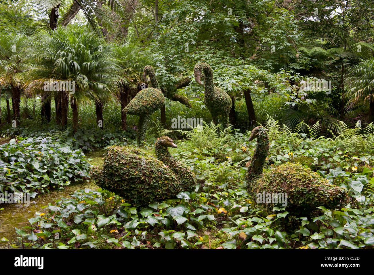park of terra nostra, furnas, são miguel, azores, portugal - Stock Image