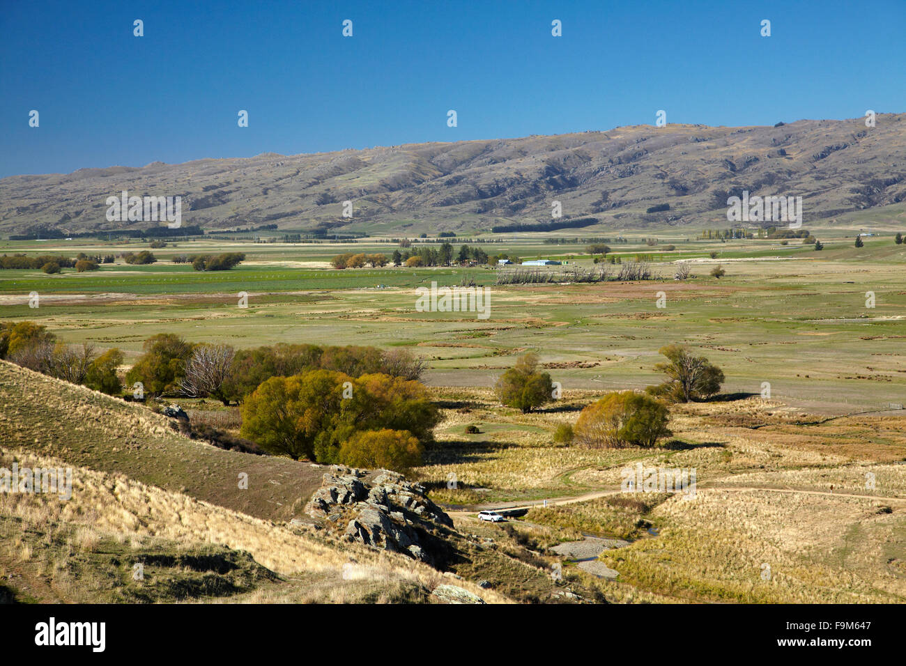 Ida Valley, viewed from Otago Central Rail Trail, Maniototo, Central Otago, South Island, New Zealand - Stock Image