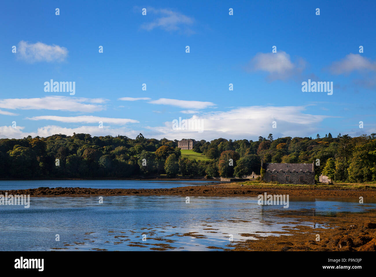 Distant 18th Century Castleward on the banks of Strangford Lough, County Down, Northern Ireland - Stock Image