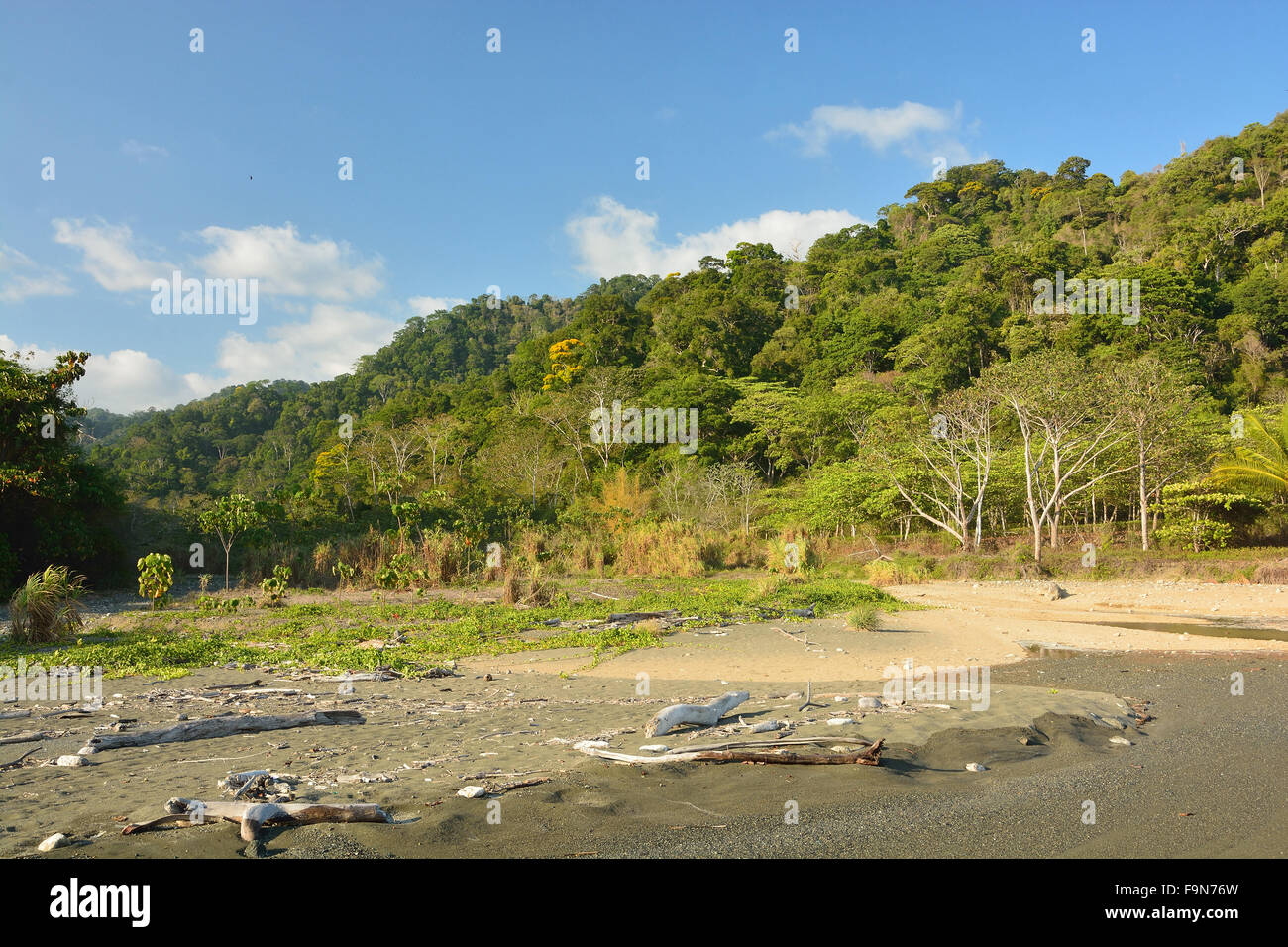Beach in Corcovado National Park Costa Rica - Stock Image