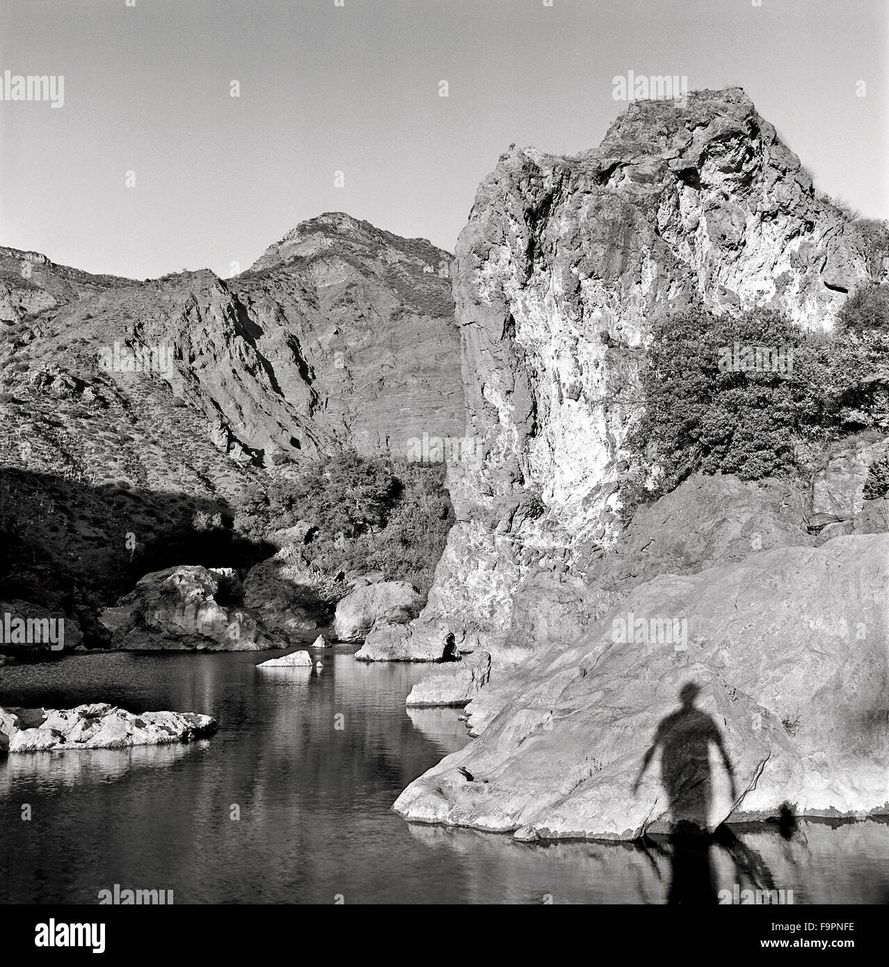 A black and white photograph of a nature scene with a person's shadow. - Stock Image