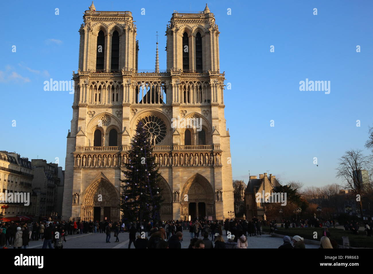 Tourists and Christmas tree outside Notre Dame de Paris cathedral ...