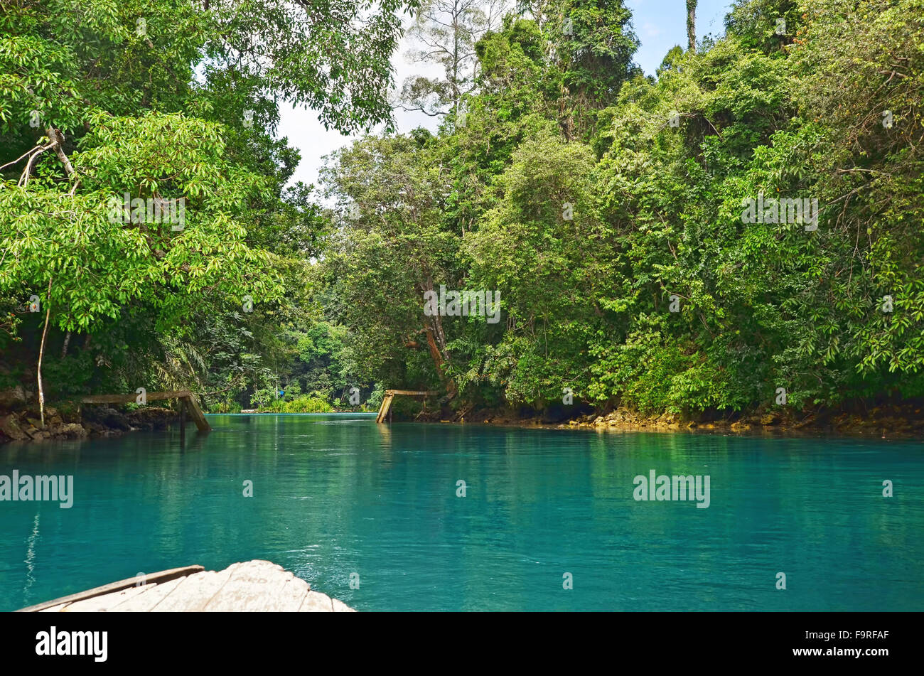 Into the jungle of Labuan Cermin Lake - Stock Image