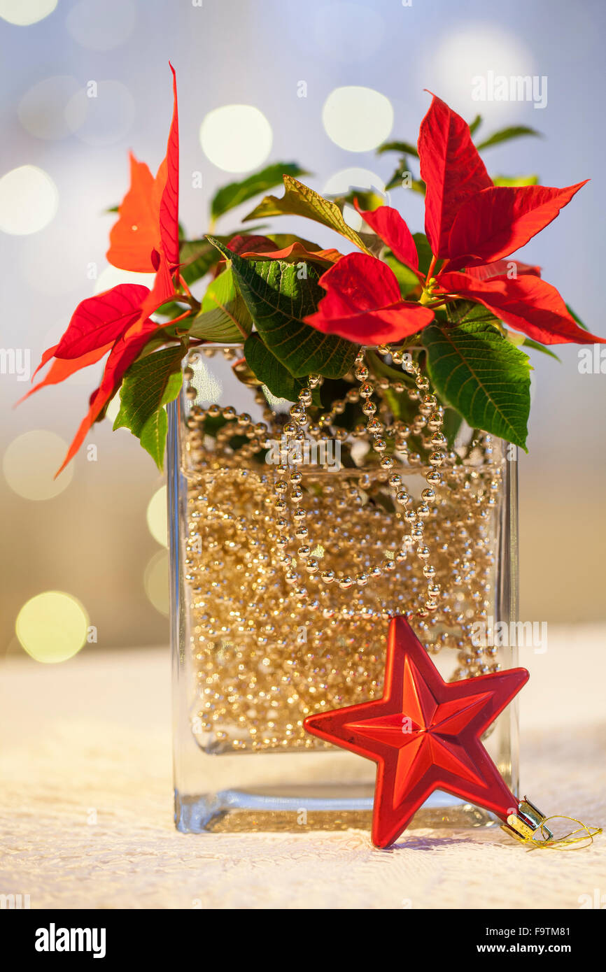 christmas decorations in glass vase christmas lights card and decore - How To Decorate Glass Vases For Christmas
