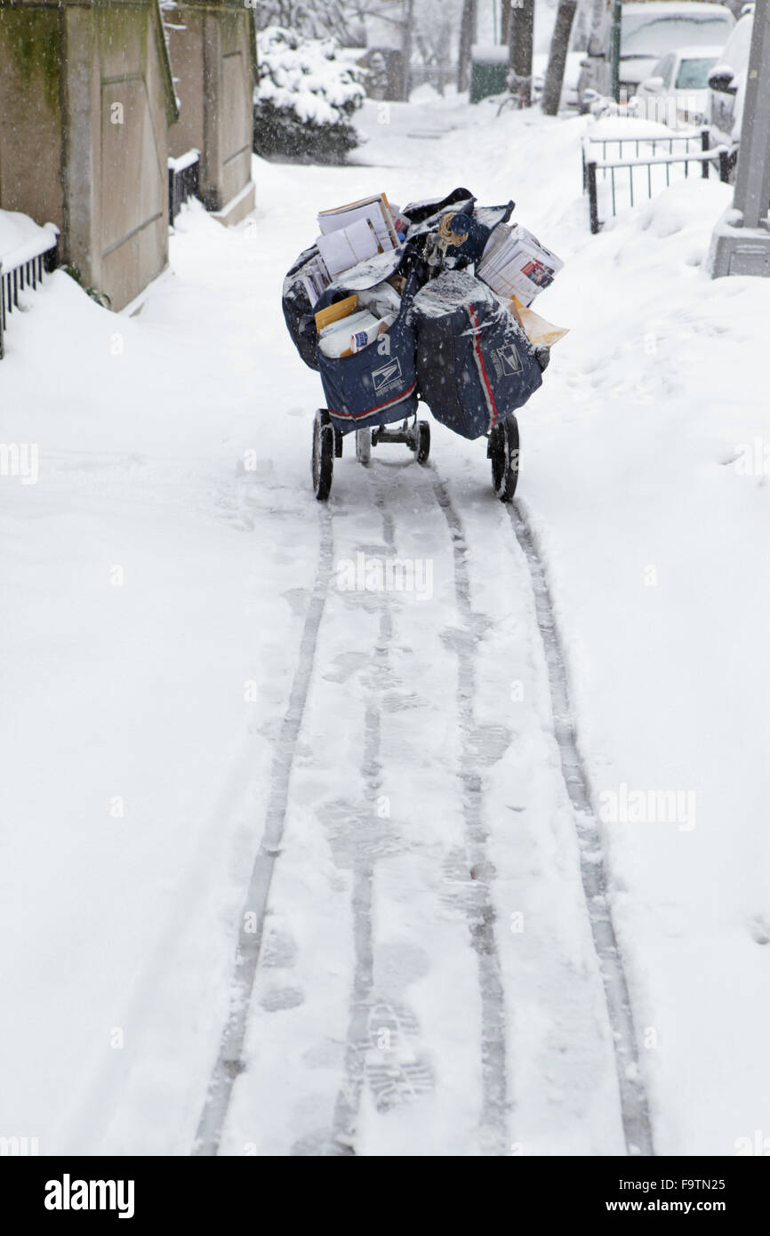 US Postal Service delivery cart in a snow storm - Stock Image