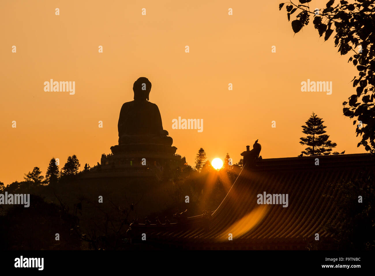 Po Lin Monastery Buddha at Sunset - Stock Image