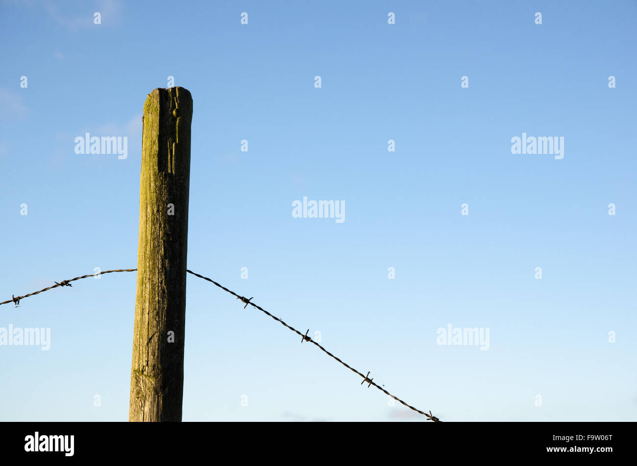 Fence post with old barb wire at blue sky - Stock Image