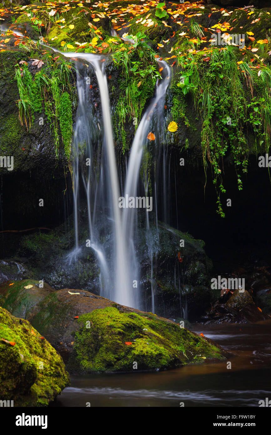 Waterfall on the Große Ohe river which flows through the Steinklamm valley, Bavarian Forest National Park, - Stock Image