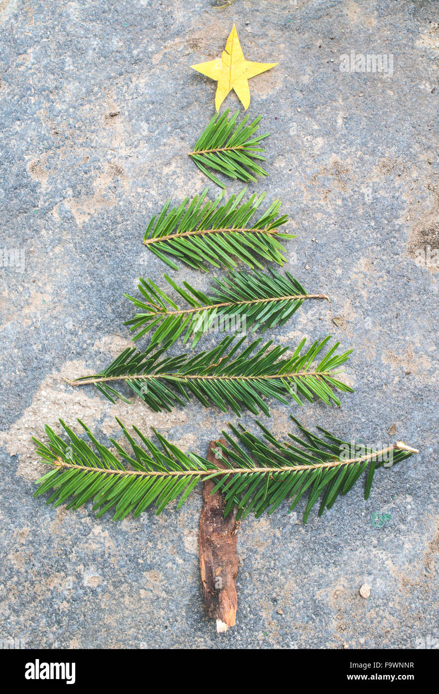 Pieces of fir branch, leaf and bark building shape of a Christmas tree - Stock Image