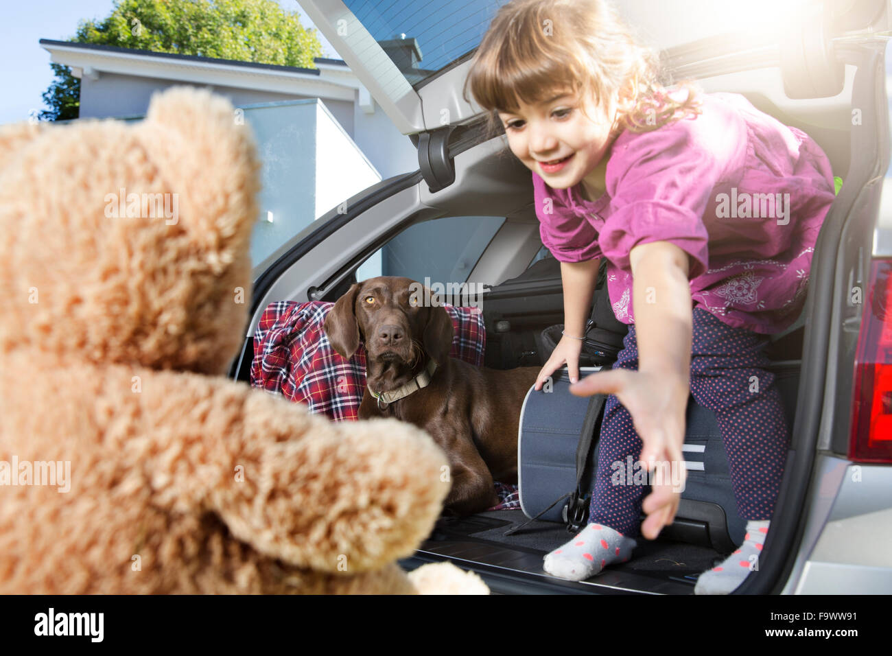 Smiling girl in car boot with dog looking at teddy bear - Stock Image