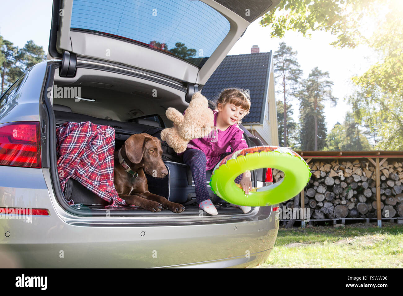 Girl in car boot with dog and teddy bear - Stock Image