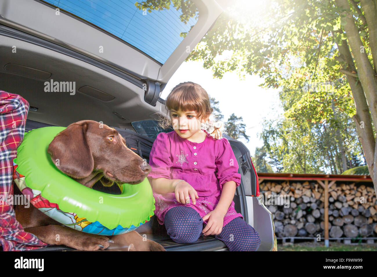 Girl in car boot with dog wearing floating tyre - Stock Image