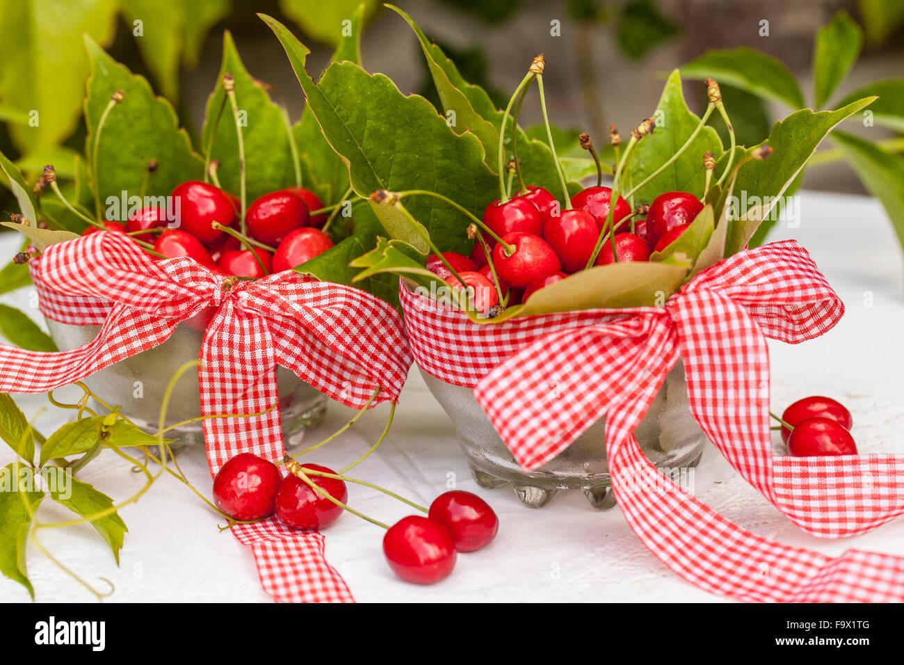 Material  cherries 9333f2fa9