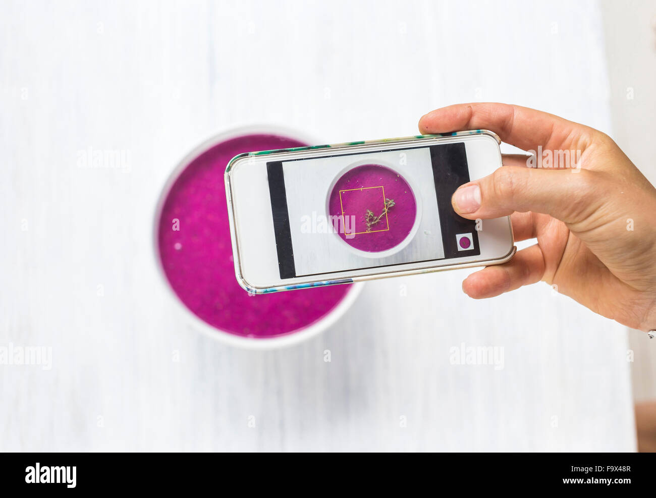Woman taking a photo of dragon fruit smoothie with her smartphone, close-up - Stock Image