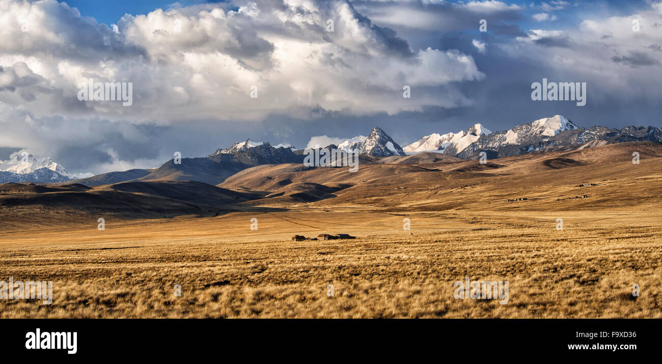 Bolivia, La Paz, Altiplano, group of small houses in the Bolivian Plateau with Cordillera Real mountains on the - Stock Image