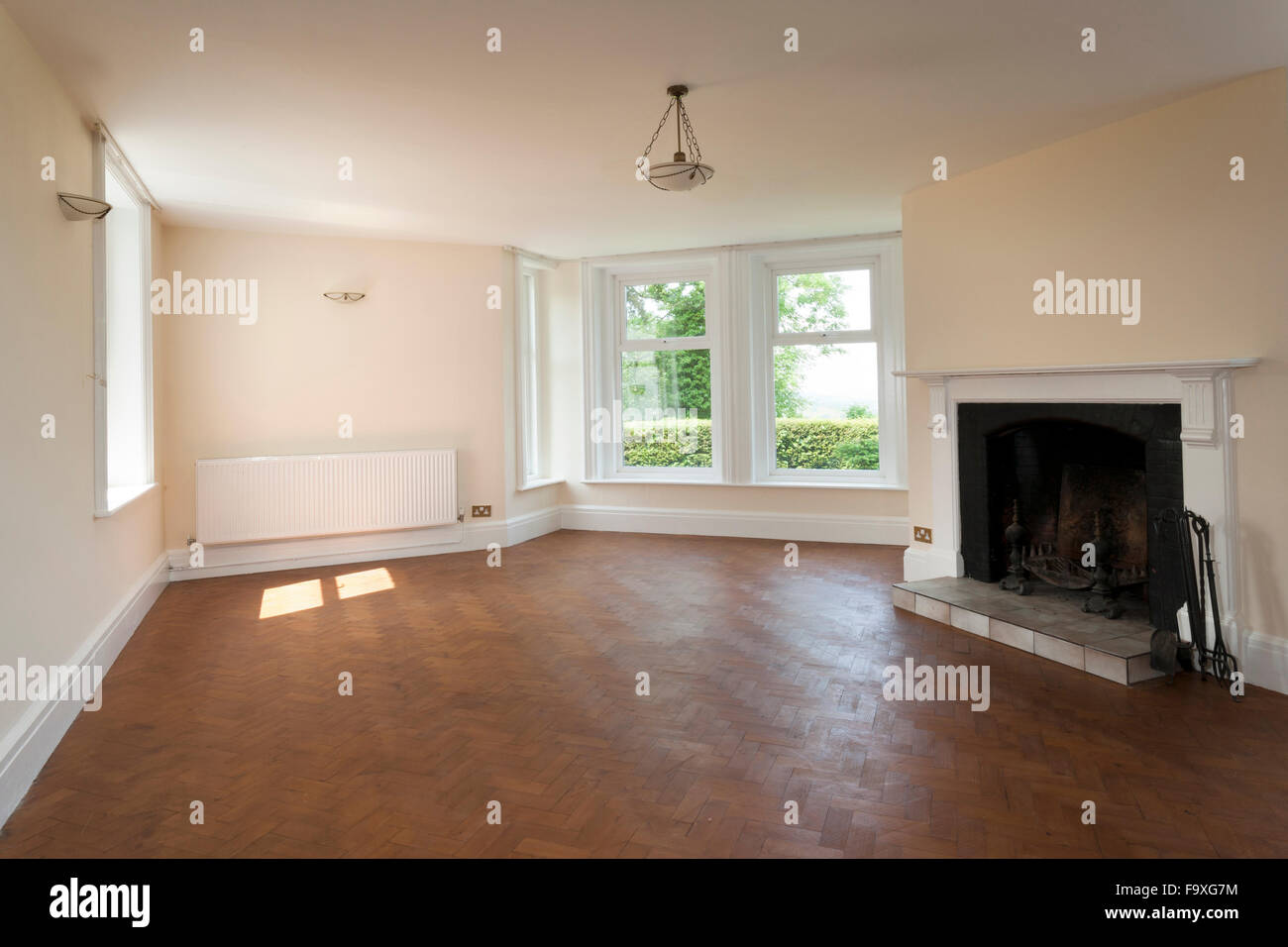 Empty upmarket house for sale, a large reception room. - Stock Image