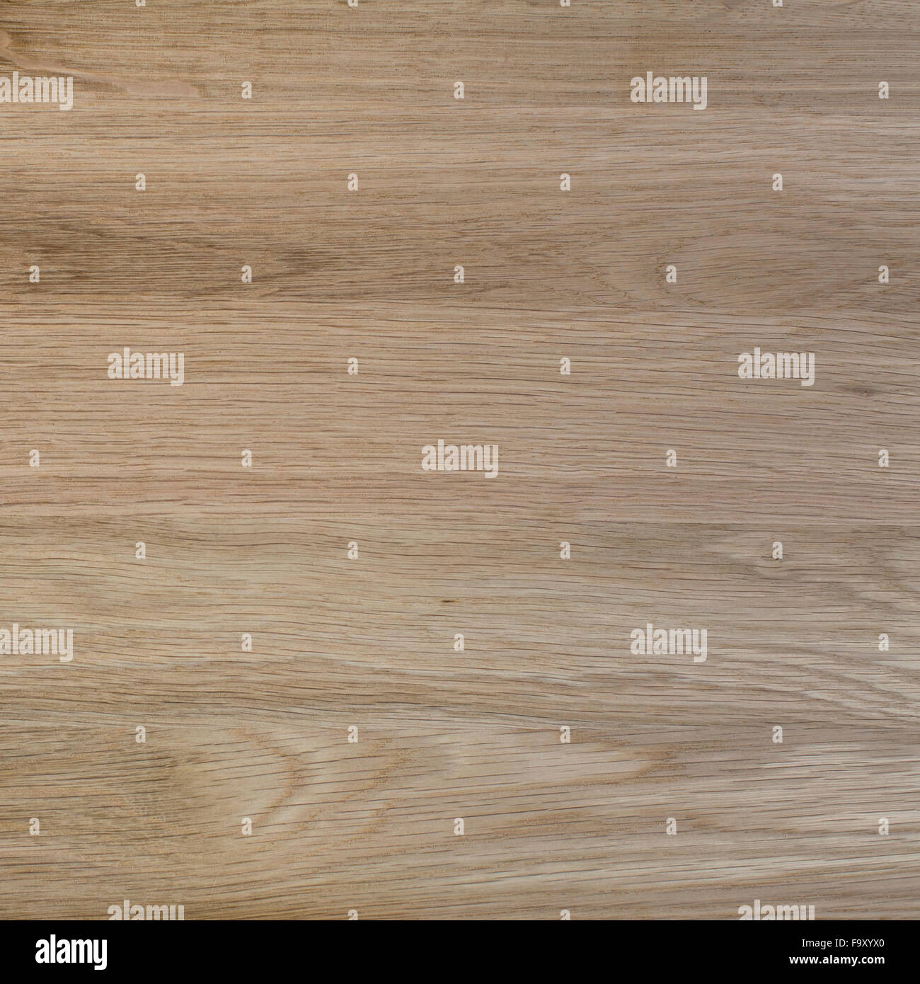 Texture of oak wood, expensive wood. - Stock Image