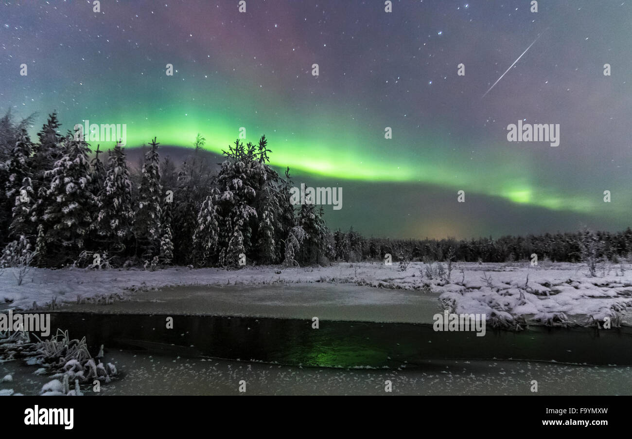 Aurora borealis and a shooting star over a frozen mire - Stock Image
