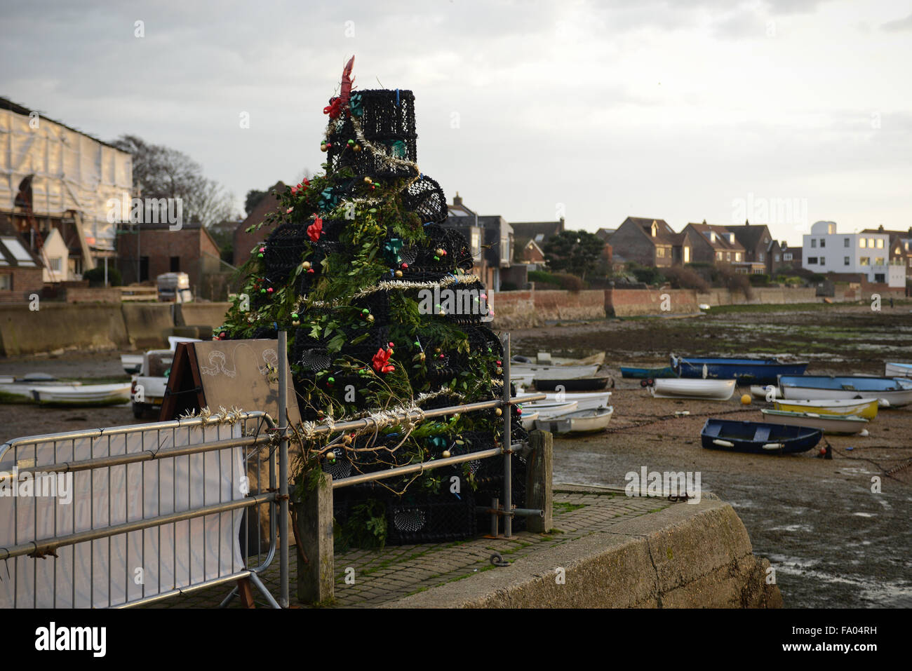How Often To Water Christmas Tree.On The Quayside In Emsworth Hampshire England A Christmas