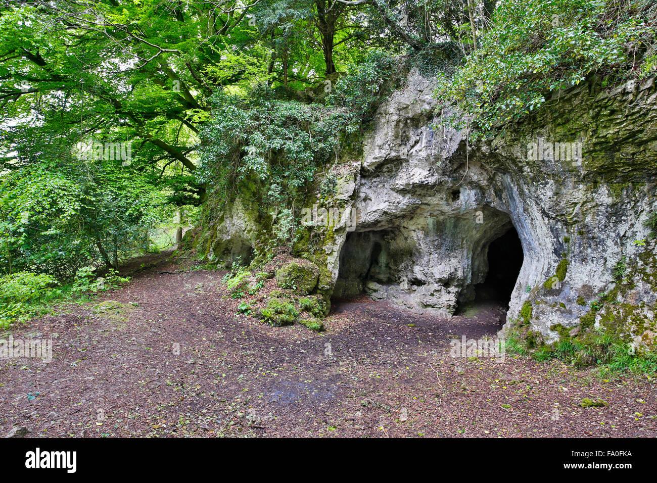 King Arthur's Cave; Herefordshire Wildlife Trust Reserve; The Doward; Herefordshire; UK - Stock Image