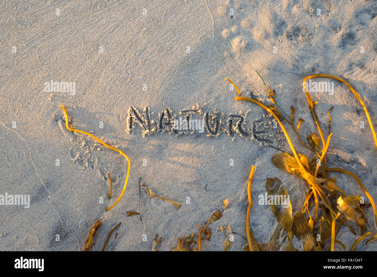 The word nature written in sand. - Stock Image