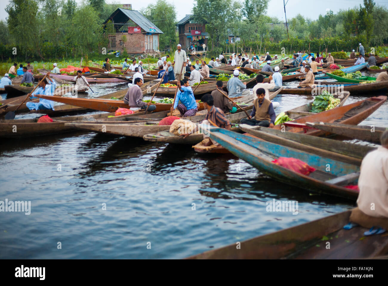 Kashmiri men buying and selling vegetables at the morning floating market on Dal Lake, major tourist attraction, - Stock Image