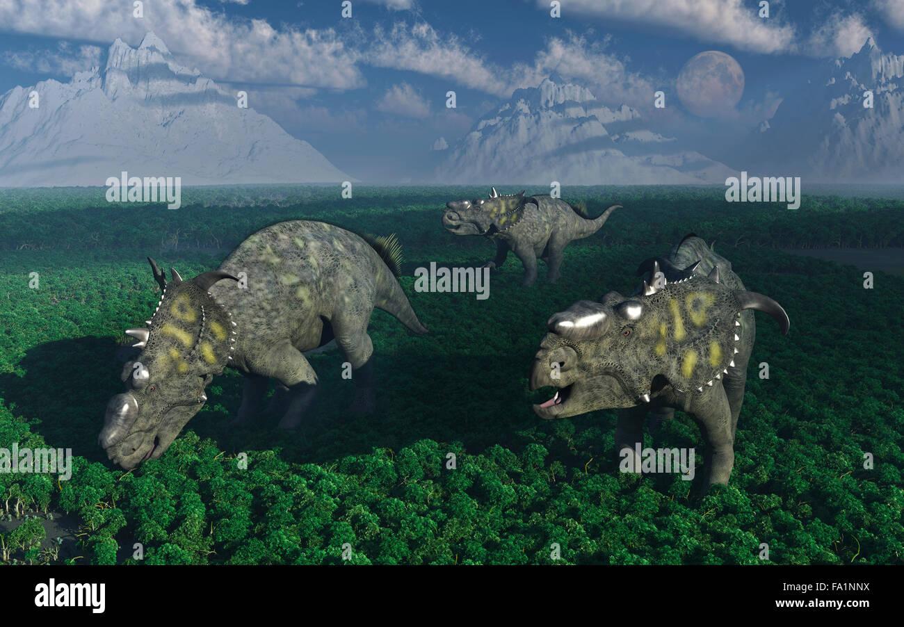 Pachyrhinosaurus Dinosaurs. Stock Photo