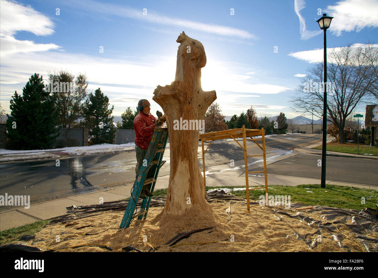 Wood carver sculpting a tall tree stump - Stock Image