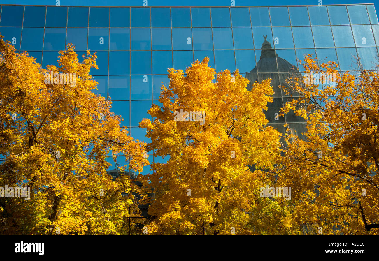 IDAHO STATE CAPITOL Dome reflecting in the Hall of Mirrors bordered by Autumn Trees. Boise, Idaho, USA - Stock Image