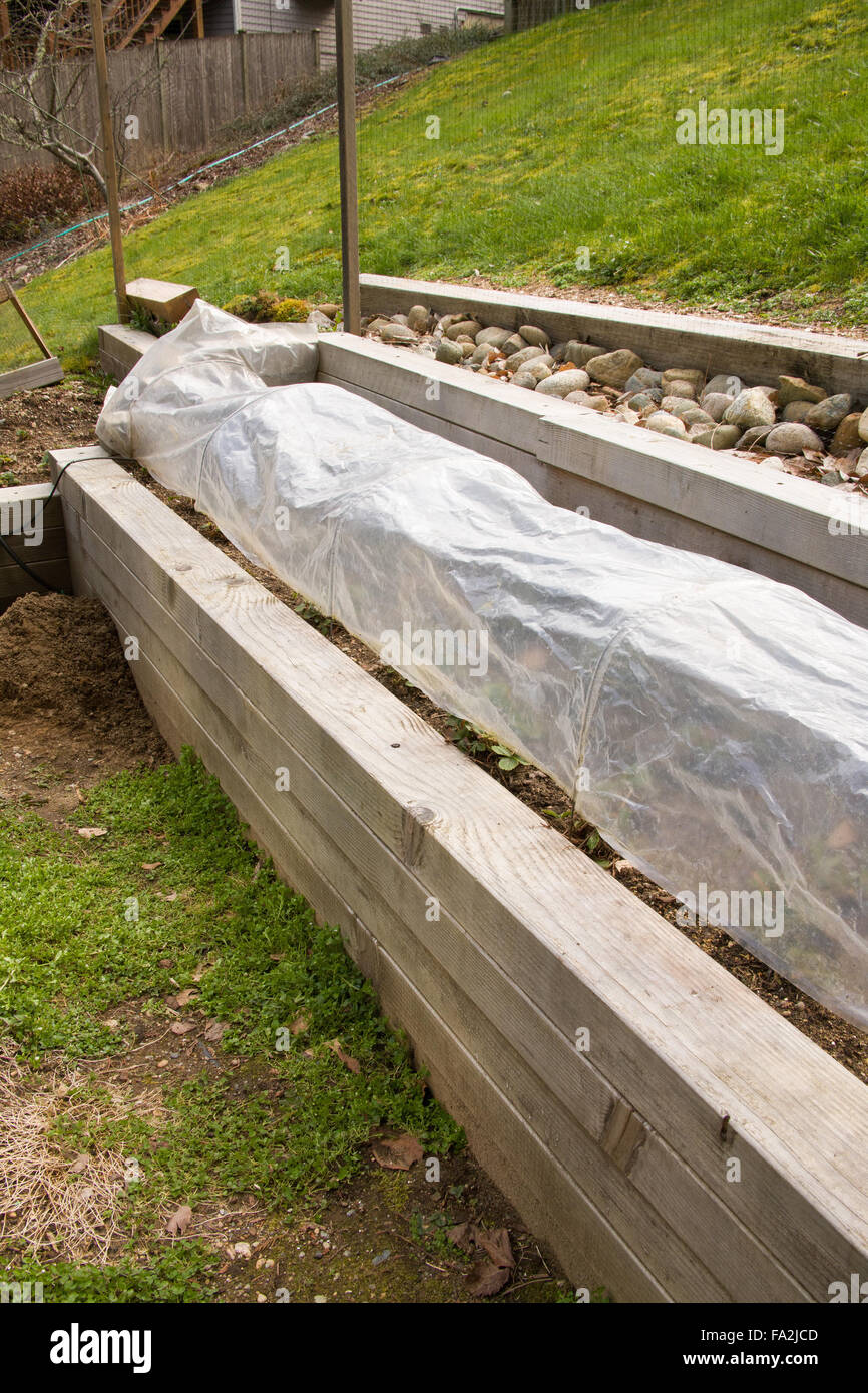 Raised Bed Strawberry Garden Covered To Provide Warmth In