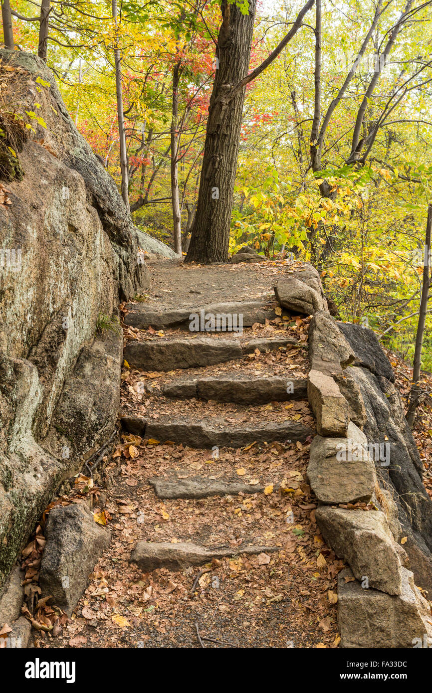 Stone steps on the Appalachian Trail in Bear Mountain State Park, New York - Stock Image