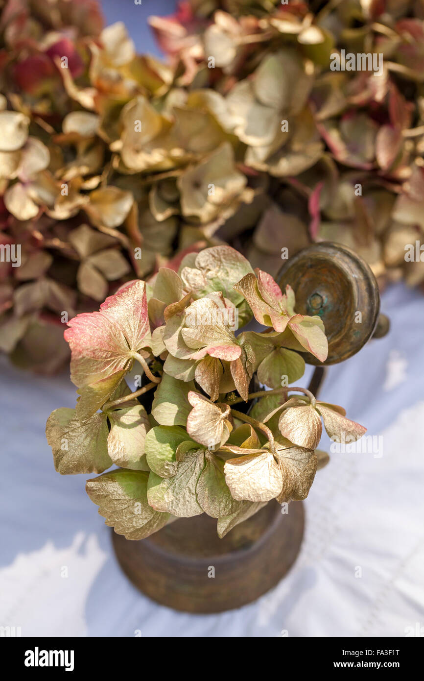 Material hydrangea flowers wisteria branches wire scissors stock material hydrangea flowers wisteria branches wire scissors ribbon gold spray paint how to make a circle of wisteria branches mightylinksfo