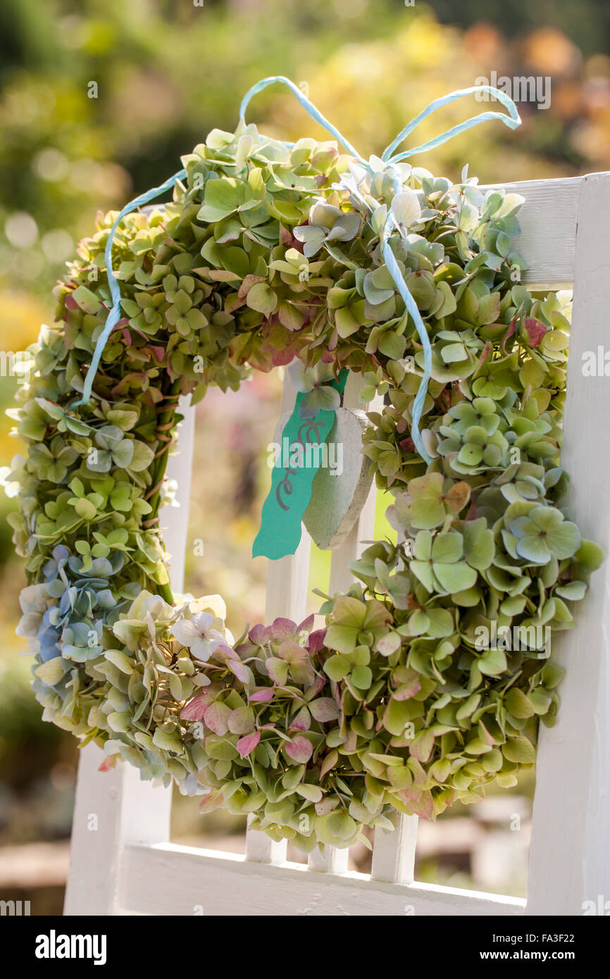 Material Hydrangea Flowers Wisteria Branches Wire Scissors Stock