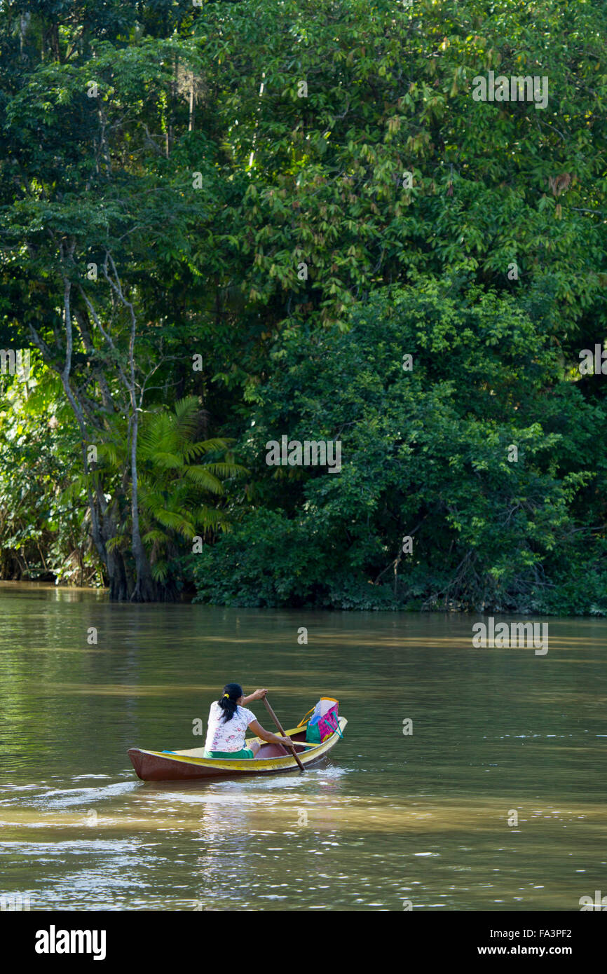 Boat on a creek in the Brazilian Amazon - Stock Image