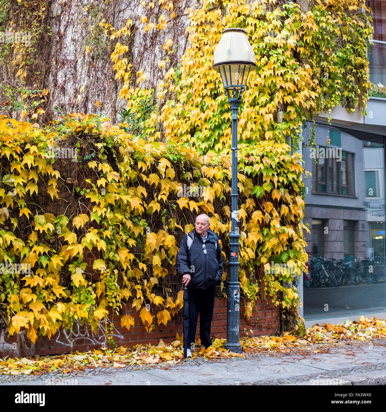 Elderly man with umbrella stands under street light with lampshade in Autumn in Berlin Stock Photo