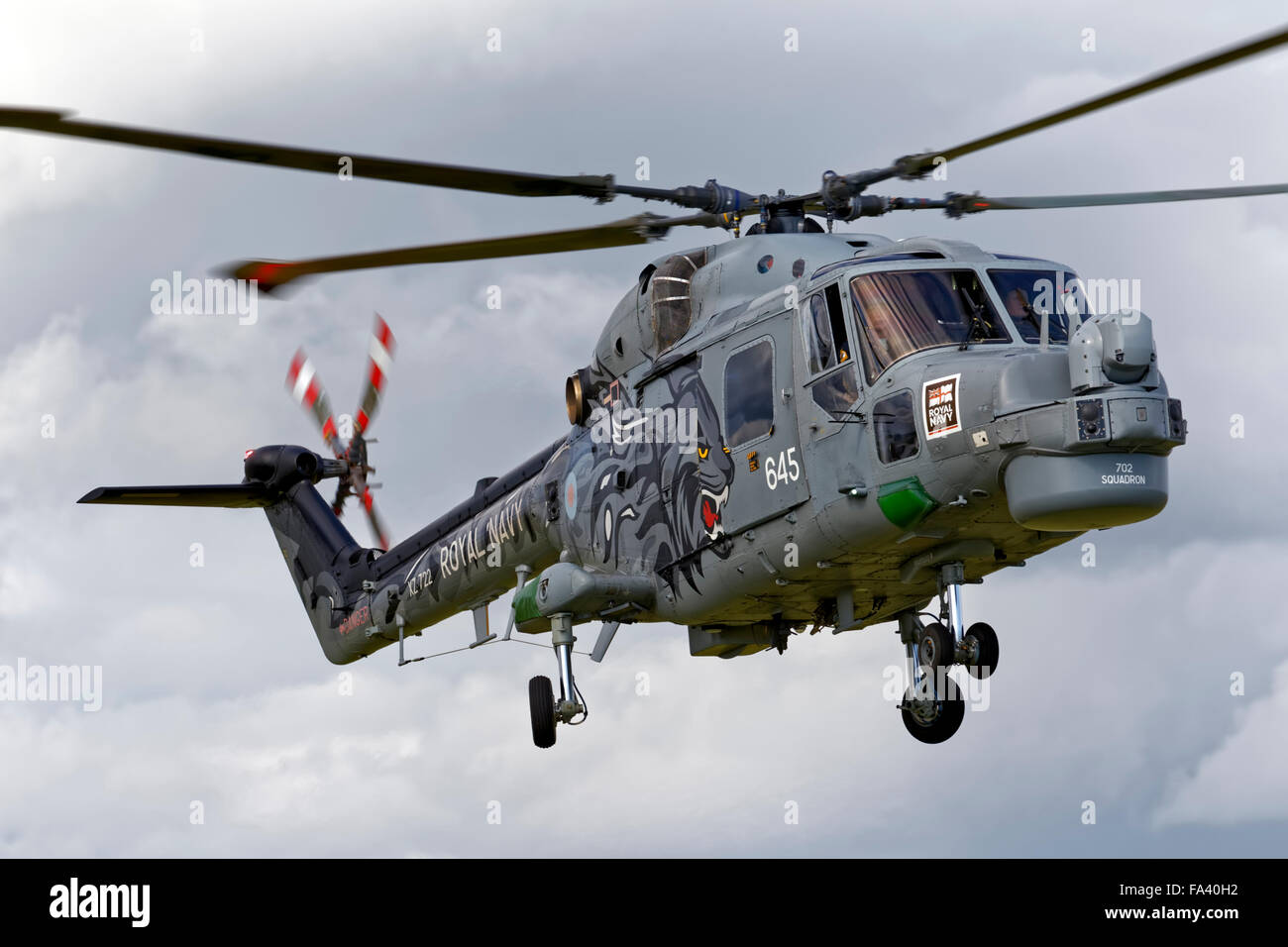 Westland Lynx HMA.8SRU XZ722/645 of the Royal Navy Black Cats helicopter display team at the Cotswold Airshow,Gloucestershire,UK - Stock Image