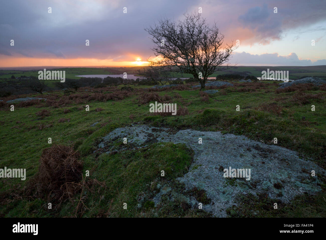 Sun setting on Bodmin moor from the slopes of Tregarrick Tor on Bodmin Moor - Stock Image