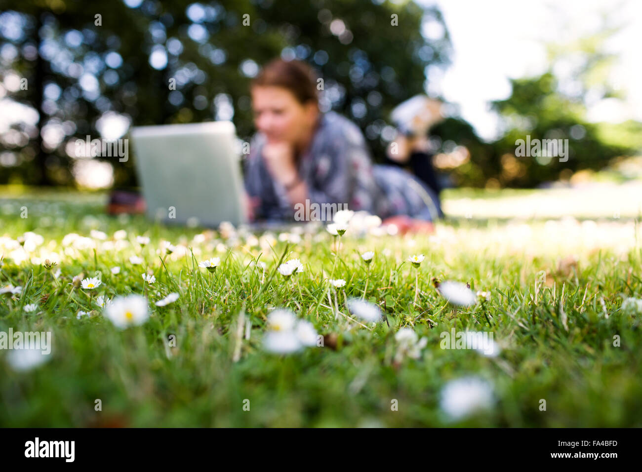 Freelancer using laptop while lying on grass at park - Stock Image