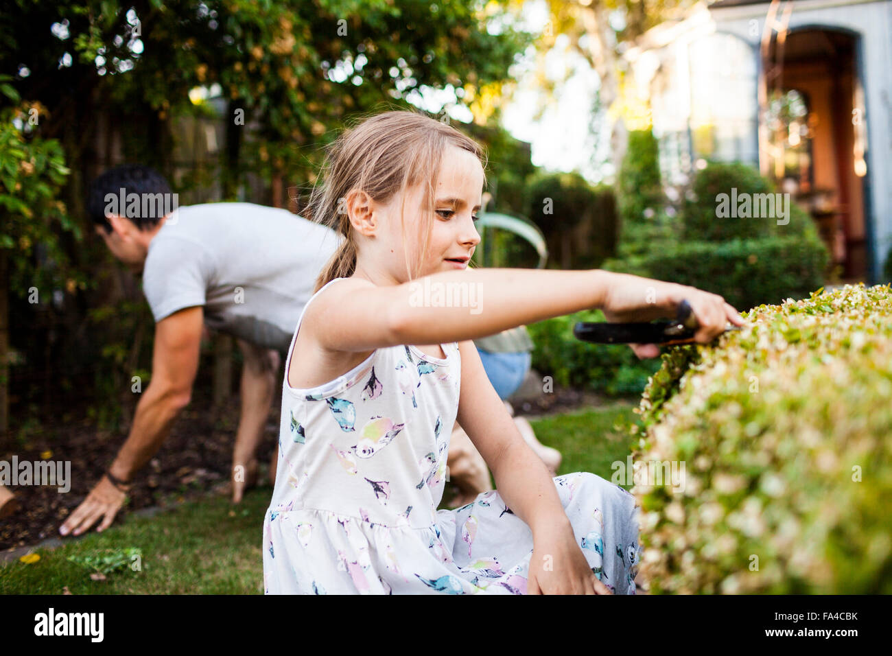 Girl pruning plant with father gardening in background - Stock Image