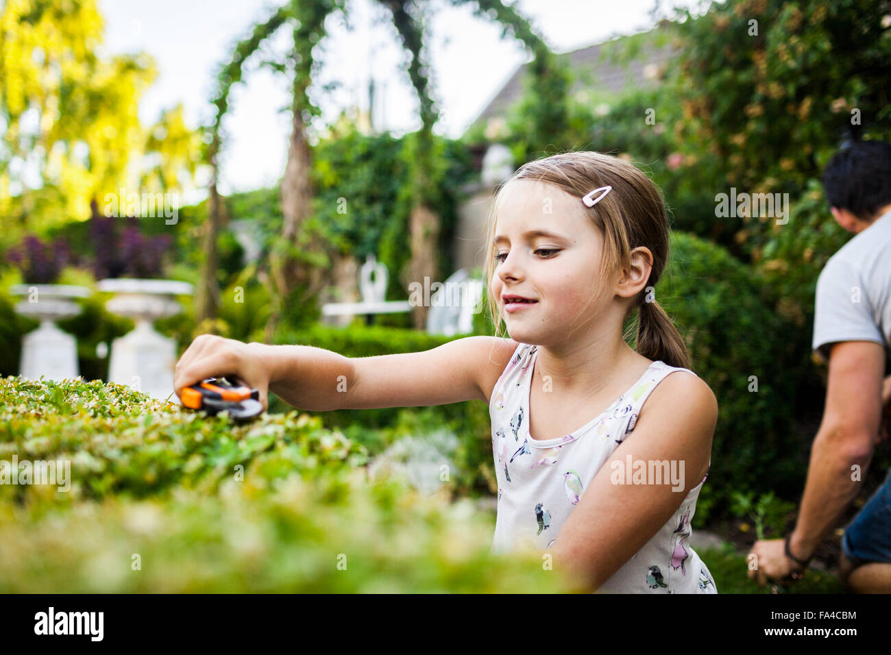Girl cutting plant with father gardening in background - Stock Image