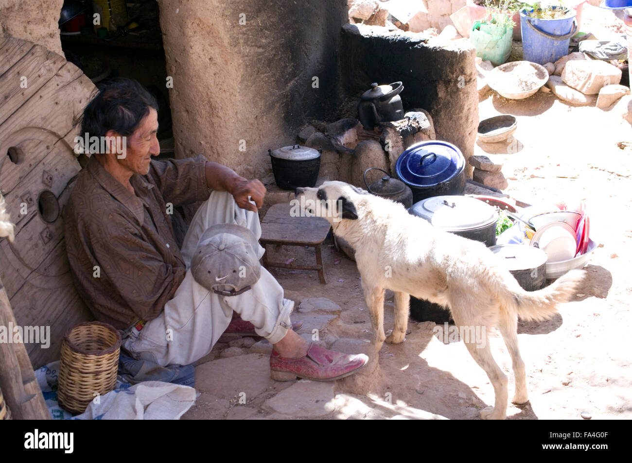Stray dog in Bolivia sniffing a poor man's hands, who is holding a dingy grey baseball cap - Stock Image
