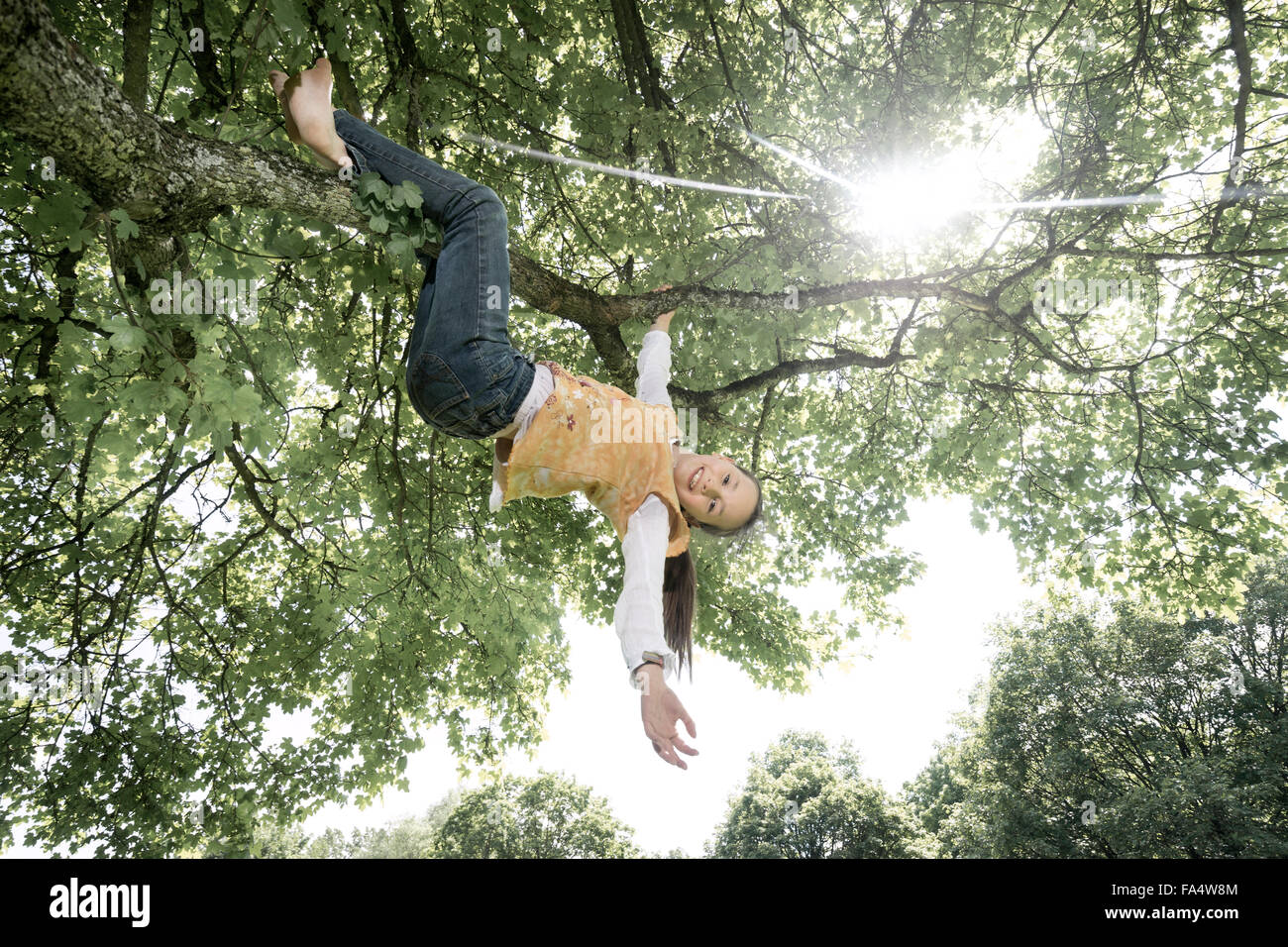 Girl hanging on tree and smiling, Munich, Bavaria, Germany - Stock Image