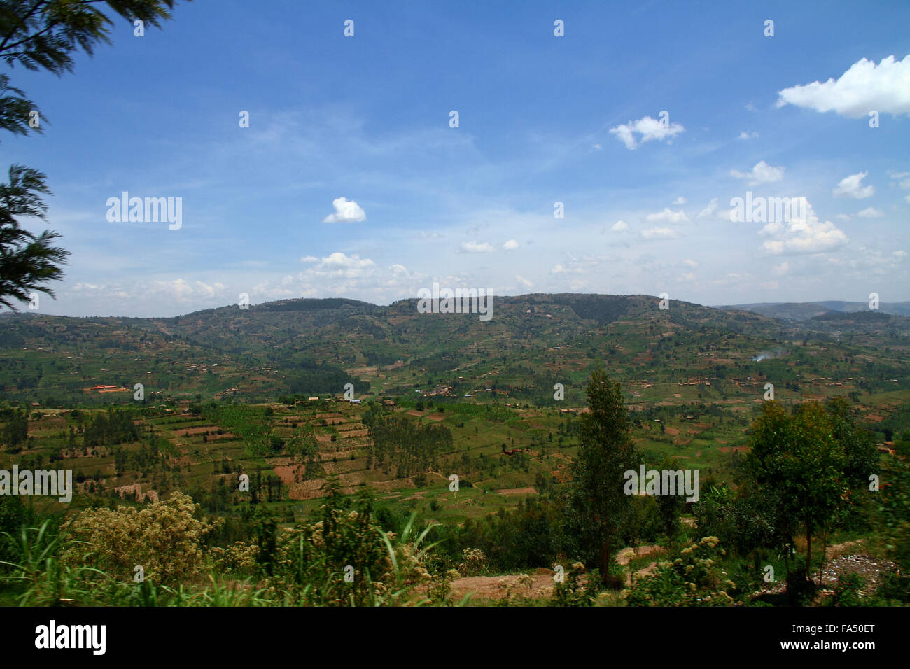 The beautiful lush hillside country of Rwanda and its many terraced farms - Stock Image