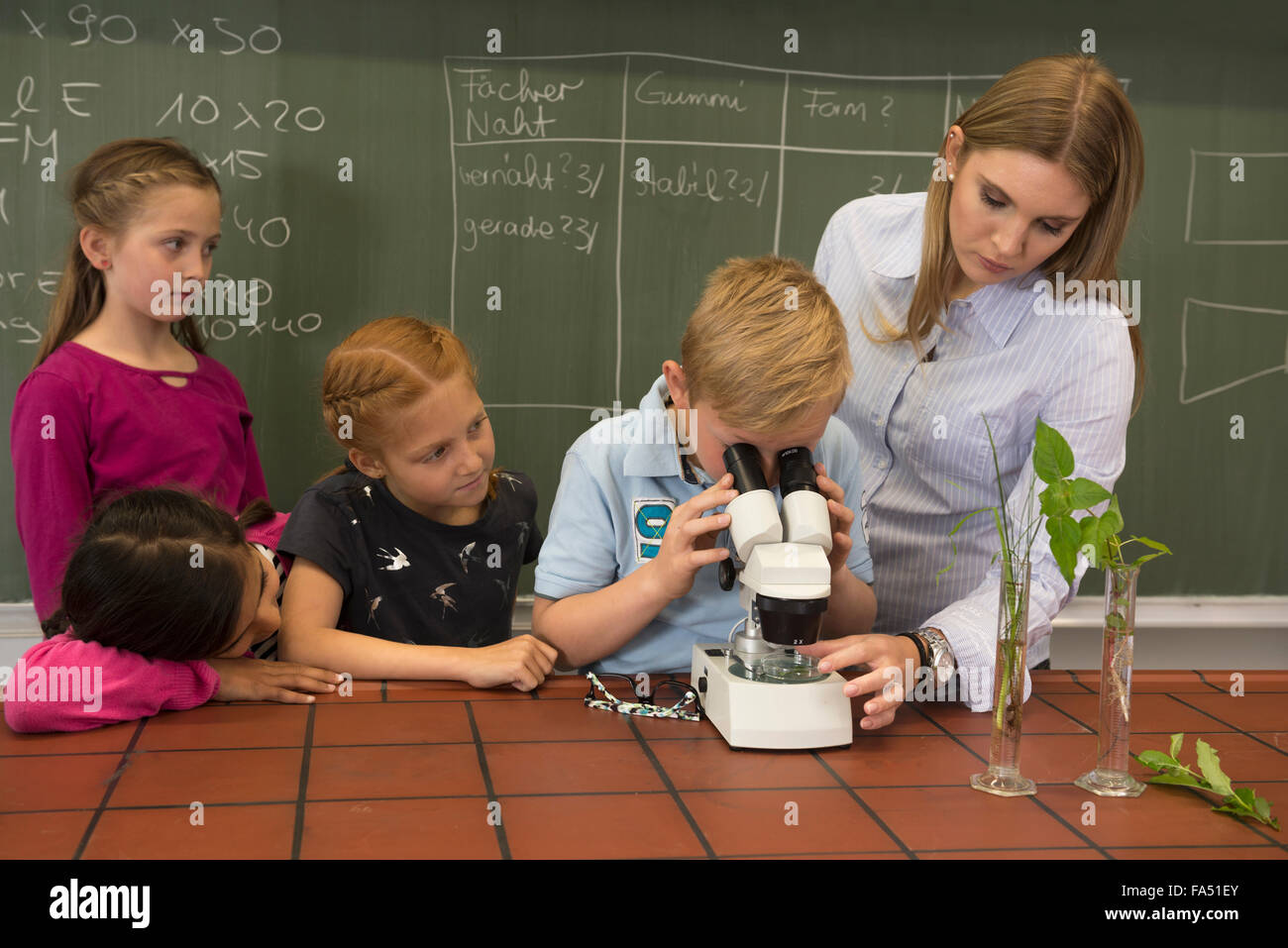School students with teacher looking through a microscope, Fürstenfeldbruck, Bavaria, Germany - Stock Image