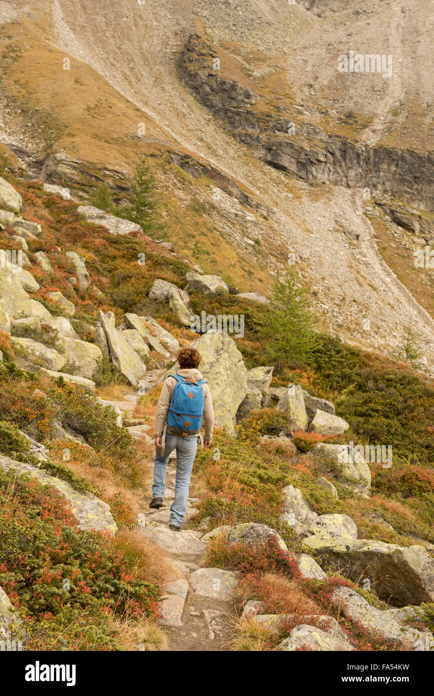 Rear view of a mature hiker climbing on mountain, Austrian Alps, Zirmsee, Carinthia, Austria - Stock Image