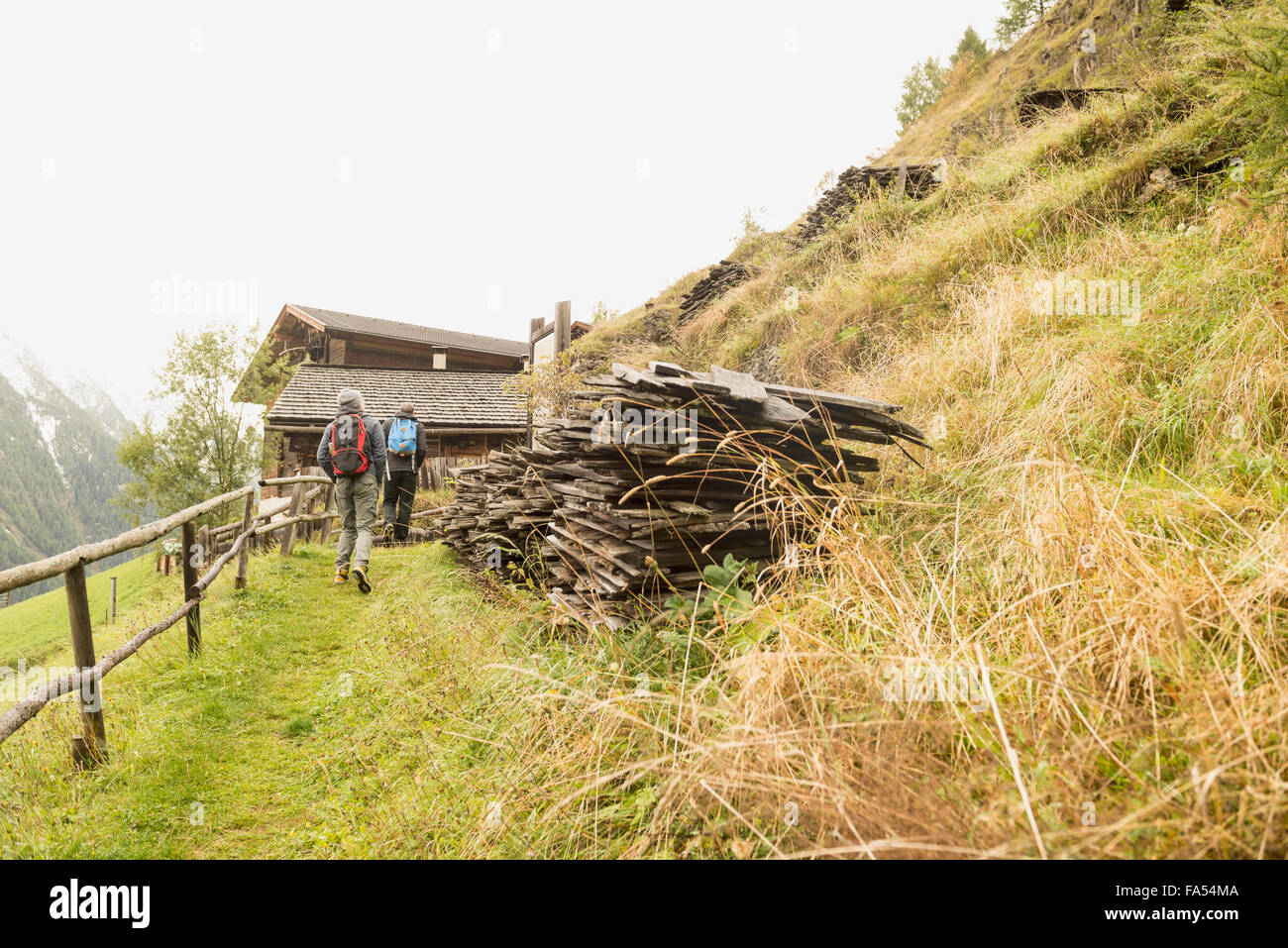 Rear view of two mature hikers walking on footpath, Austrian alps, Carinthia, Austria - Stock Image