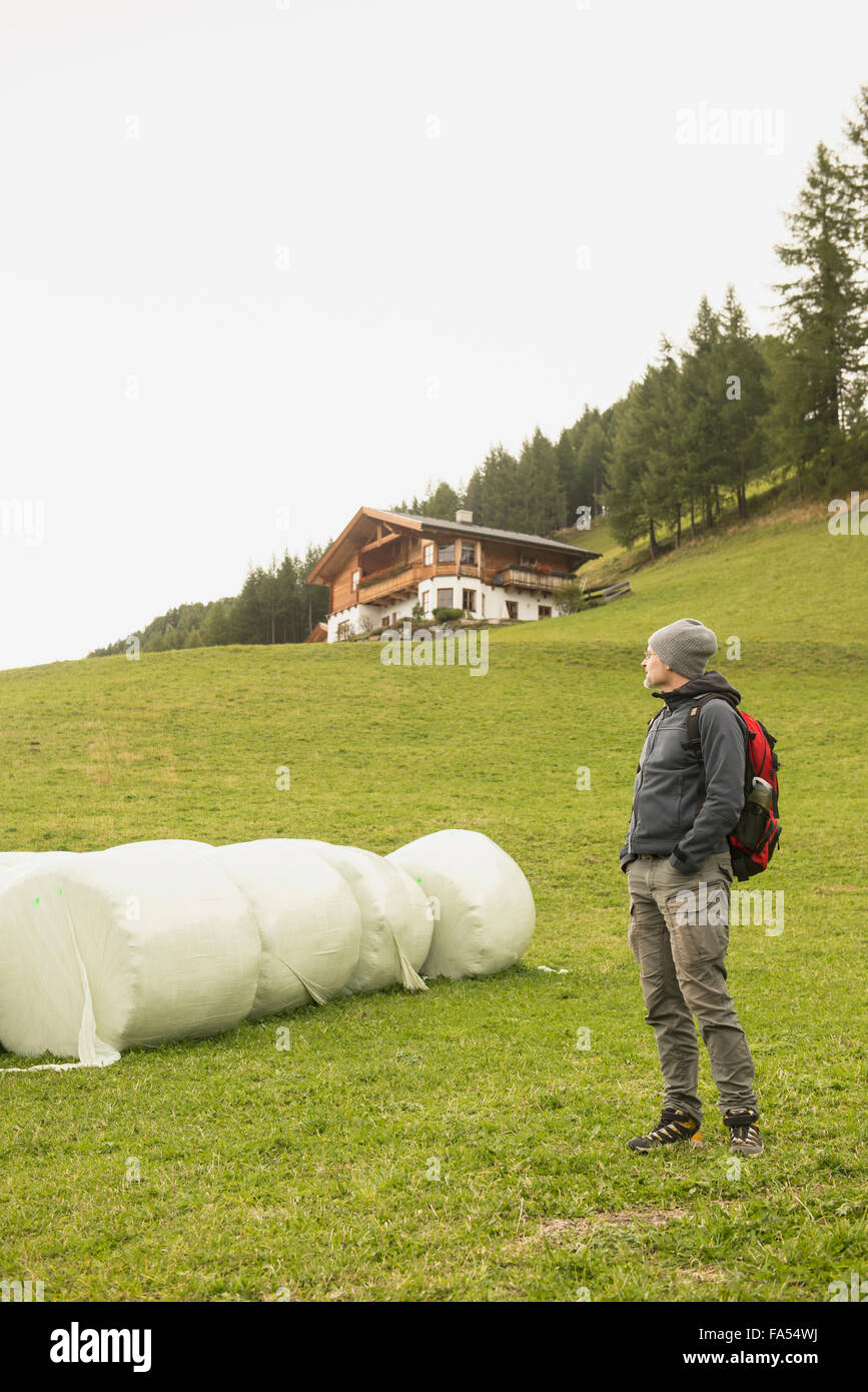 Mature hiker standing near bales and looking at view, Austrian alps, Carinthia, Austria - Stock Image