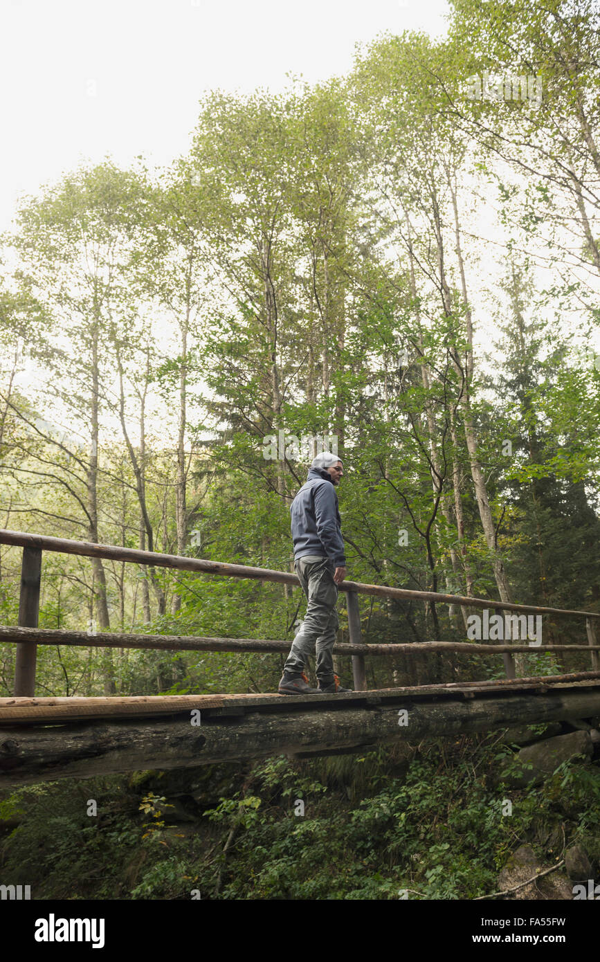 Mature hiker crossing footbridge in forest, Austrian Alps, Carinthia,  Austria - Stock Image
