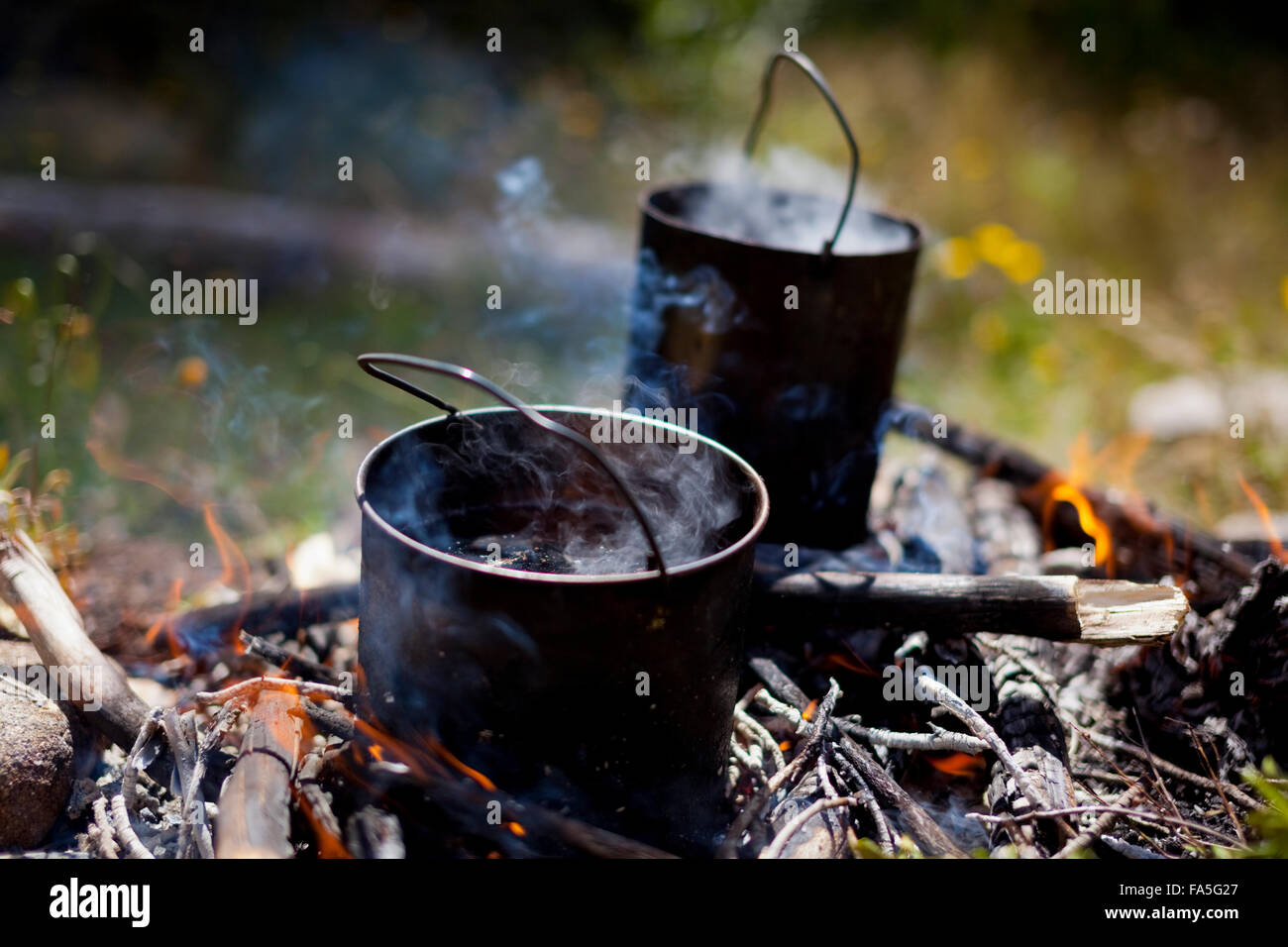 Australian billies on the boil in a campfire in the Victorian High Country. - Stock Image