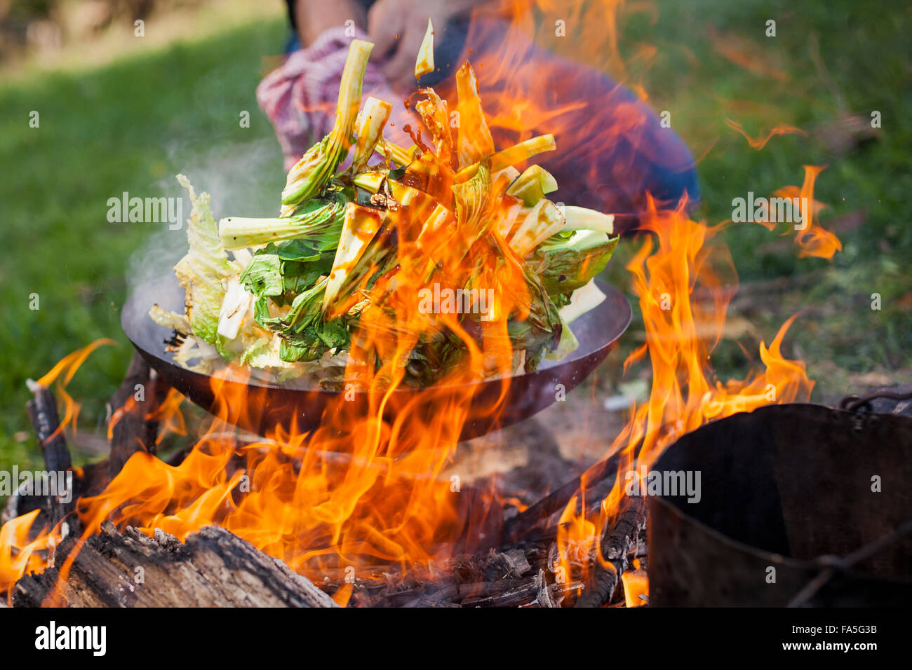 Wok-tossed Asian greens and marinated pork-loin stir-fried over the campfire during a Bogong Horseback Adventure. - Stock Image